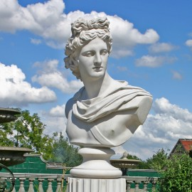 Apollo Belvedere Marble Bust