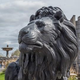 David Sharp Studio Bronze Lions (Pair)