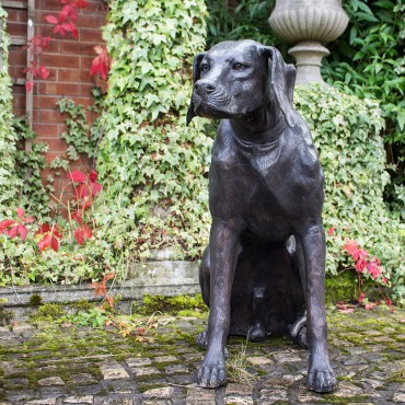 Bronze Labrador Dog by the david sharp studio